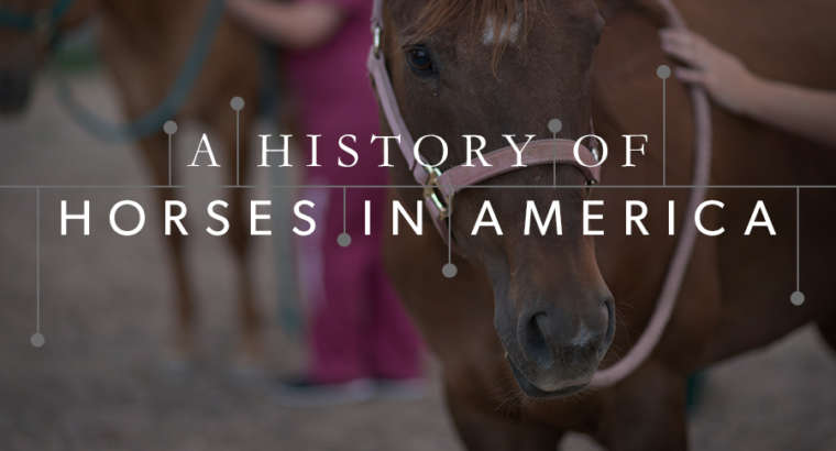 A History of Horses In America