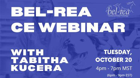 Bel-Rea CE Webinar with Tabitha Kucera